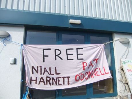 free niall and pat!
